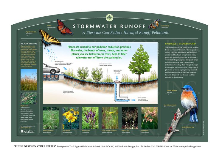 """Pulse Design provides Outdoor Interpretive Nature Trail Signs, Environmental Education Exhibits, Graphic Display Panels,Wayfinding Signage and Monuments, focused on Wildlife and Habitat throughout the United States. The PULSE DESIGN NATURE SERIES is a beautiful, """"Ready-to-Order"""" and """"Customizable"""" series of interpretive trail signs that cover many common nature subjects. See more signs from our URBAN HABITATS & ENVIRONMENTAL SIGNS SERIES ."""