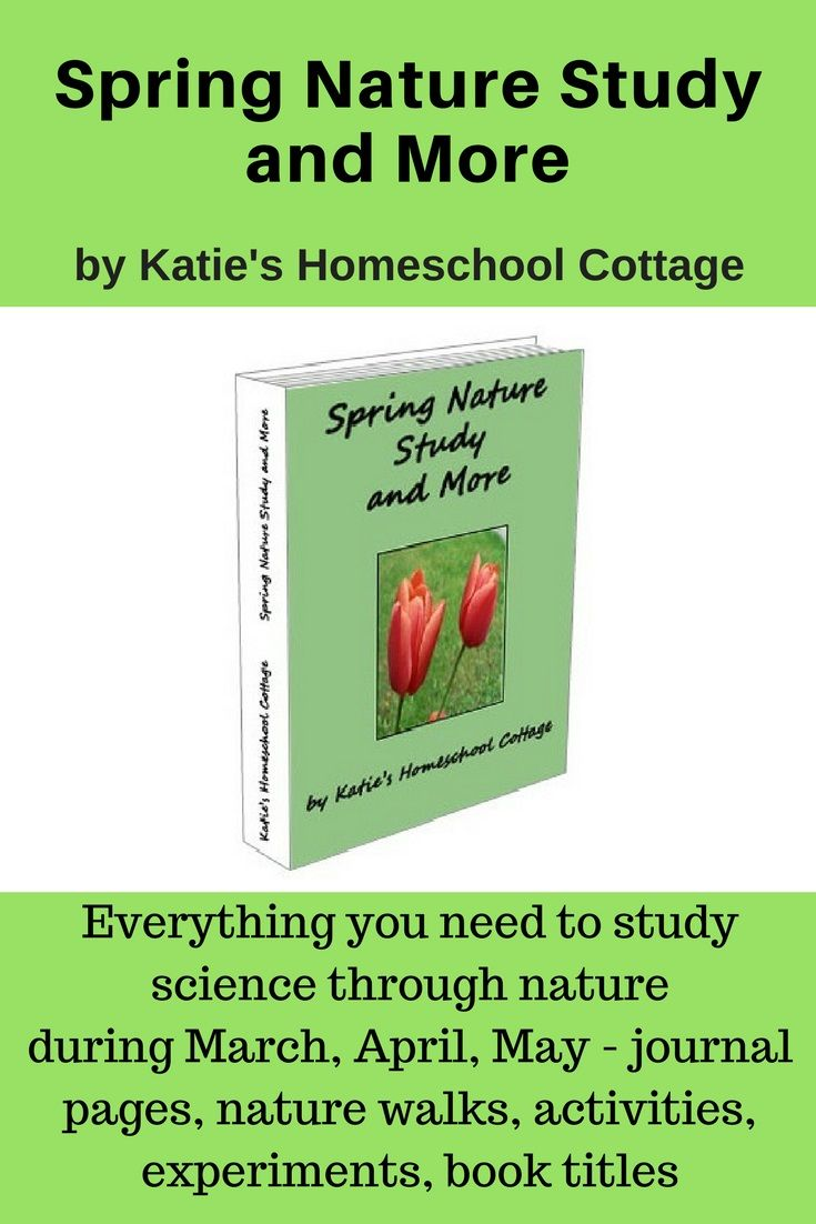 Study Science through nature with this nature study during March, April, and May with nature walk questions and activities, experiments, book titles, poetry, extension topics and activities, and nature journal pages.    https://katieshomeschoolcottage.com/product/spring-nature-study-and-more-e-book/