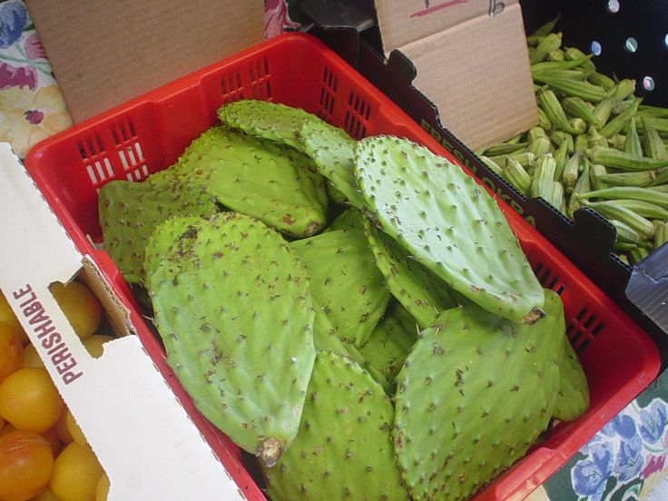 Nopales (Cactus leaves) ! Try cooking new recipes with these -- at our store this week!