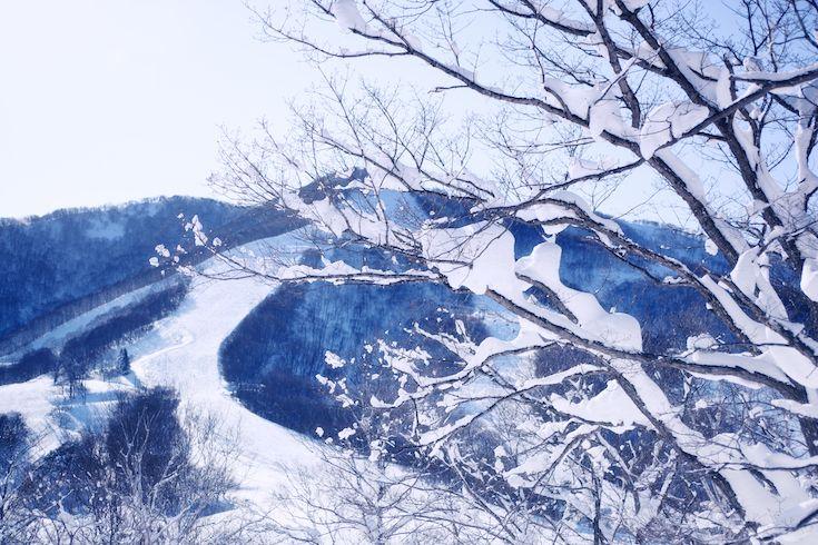 Pastel Light at Madarao Mountain Ski Resort Japan