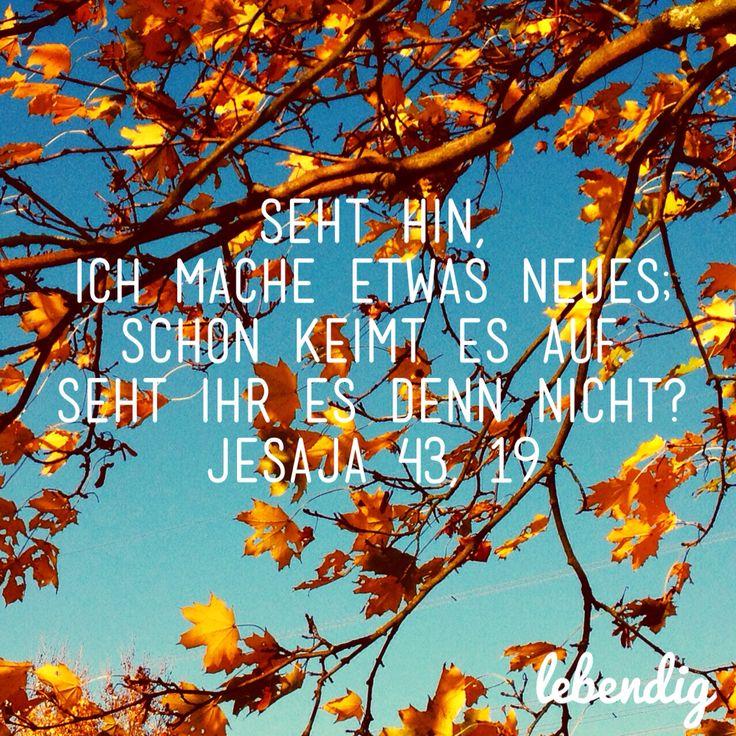 Jesaja 43,19