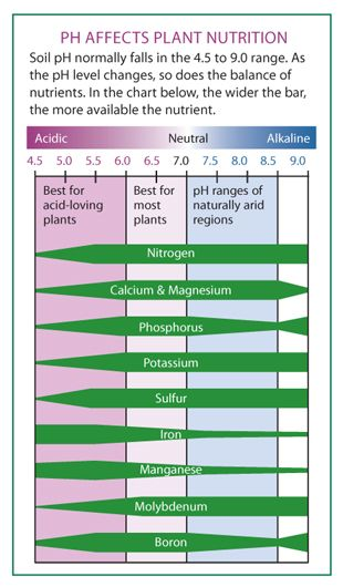 The Four Things You Need to Know About Soil pH - Fine Gardening Article