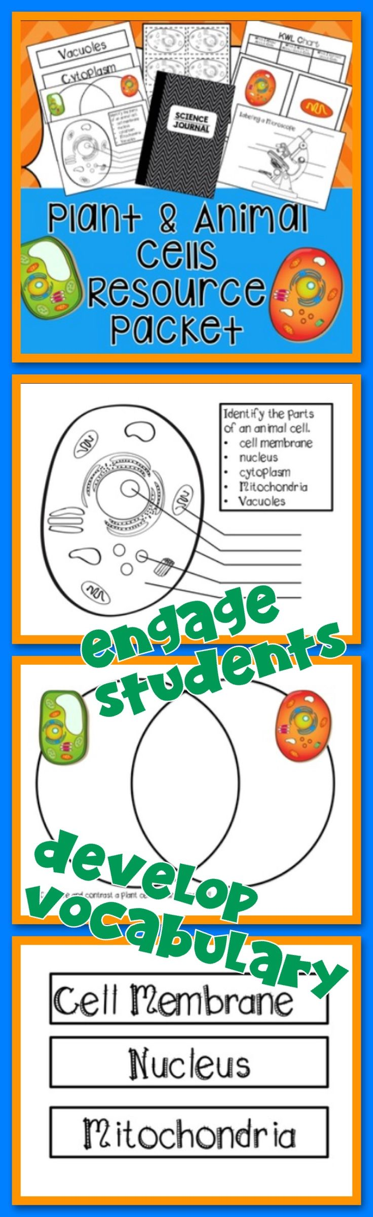 Animal and Plant Cells Unit is an engaging and hands on unit that can supplement activities to your science curriculum. Vocabulary development and cell function are keys in learning about plants and animal cells. Interactive journaling and comparing animal and plant cells will help students understand the key differences of cells.