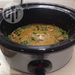 Slow Cooker Lamm Curry mit Spinat @ de.allrecipes.com