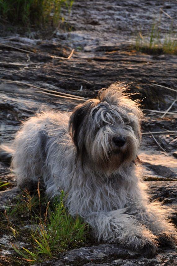 OLIVIA FOTO Anneli Särnblad Pederson
