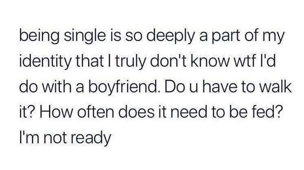 20 Memes About Single Being Too Real Shenhuifu Hilariousmemes Quick Saves Hilariousmemes Memes Funny Single Memes Single Memes Single Quotes Funny