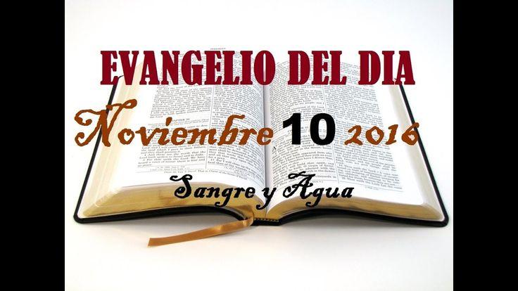 Evangelio del Dia- Jueves 10 de Noviembre 2016- Sangre y Agua