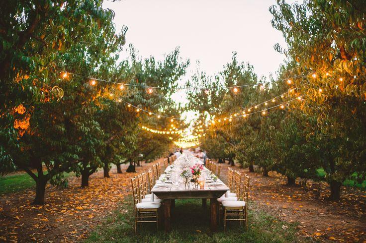 A Cozy Wedding Reception in The Peach Orchard | Photography : marymargaretsmith.com | http://www.fabmood.com/a-cozy-fall-wedding-in-the-peach-orchard #peach #fallwedding