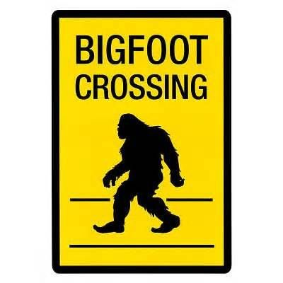 Is Bigfoot Real? Books about Bigfoot for Curious Kids