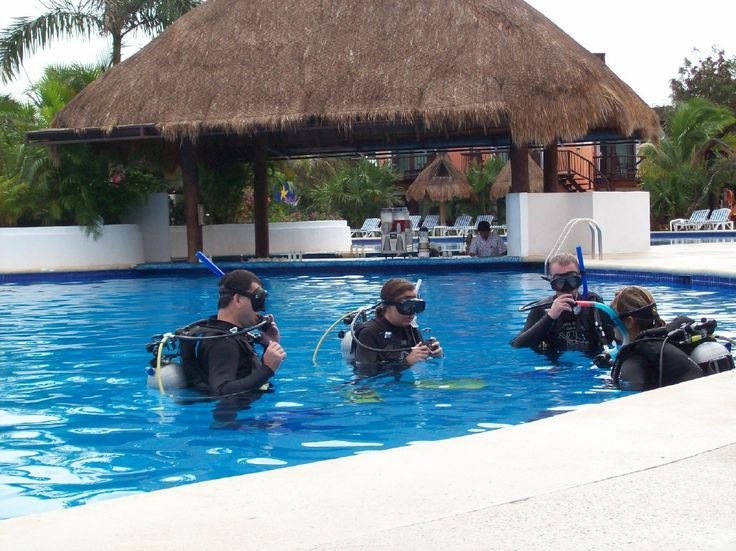 Our PADI scuba diving courses will take you weightlessly onto the reef to swim like the fish alongside you. Every PADI dive course is easy, fun and safe.