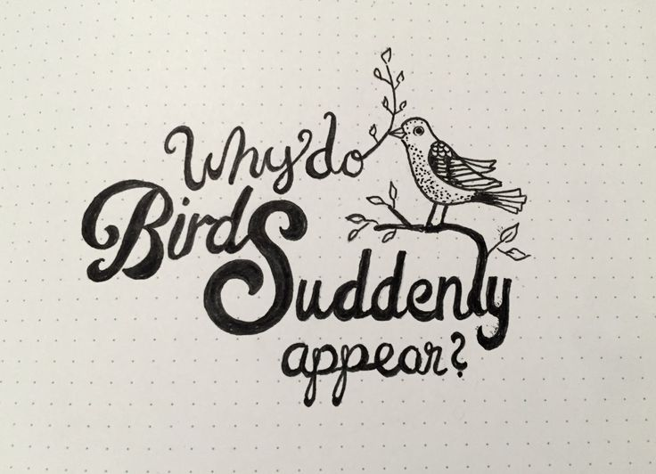 Why do Birds Suddenly appear? hand lettering, type, song