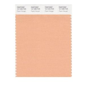 Pantone Peach Pantone Color Style Color Pantone