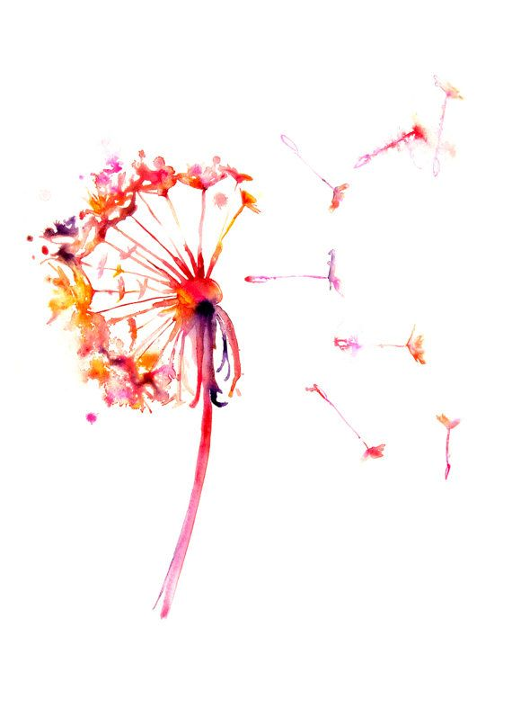 Dandelion Wall Poster Watercolor Poster by WatercolorMary