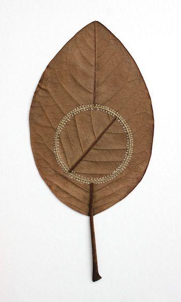 I love Susanna Bauer's #Crochet Leaf Sculptures - #art