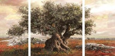 ΕΛΑΙΟΤΥΠΙΑ VIEW WITH OLIVE TREE I