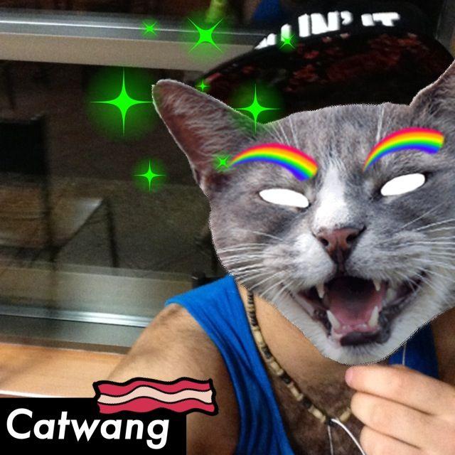 #cat #catwang #app #xcx #killinit #gay #gai #gayboy #boy #cute #me #smile #sweet #hot #fun #funny #follow #followme #good #hd #teampic #teampicture #ipod5 #insta2013 #2013 #instaphoto #photo #pic #picture