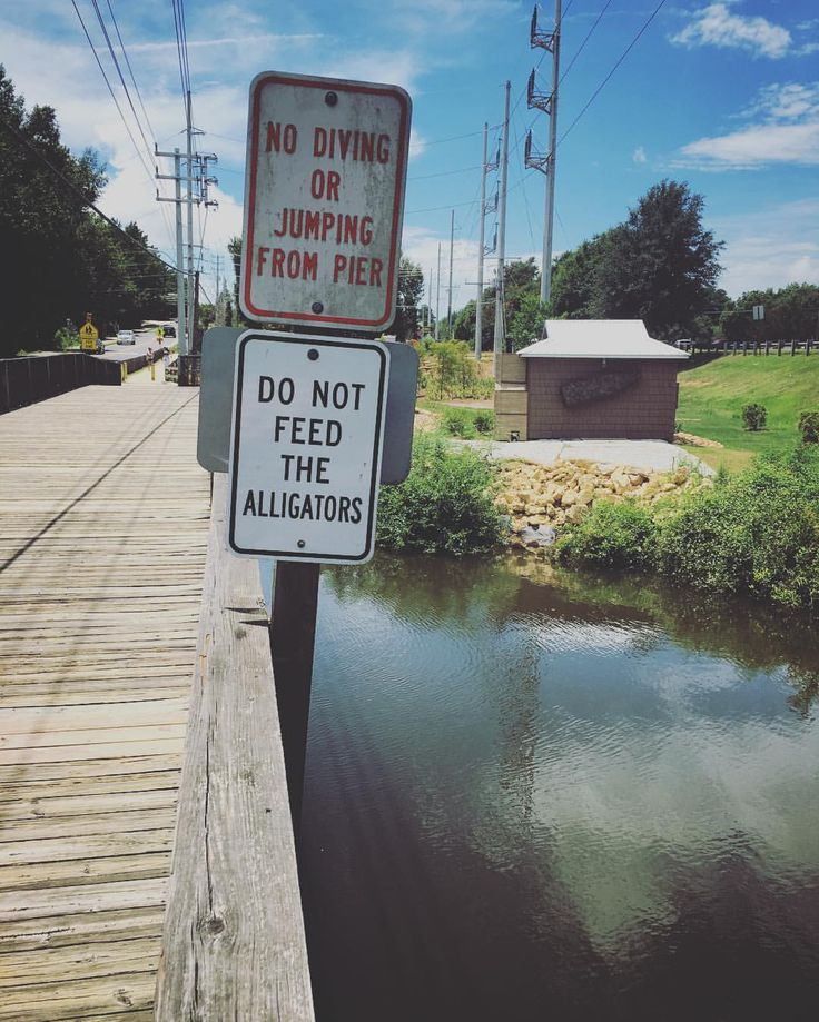 We are checking out the new Gator Alley in Daphne, Alabama, and there are RULES to obey! . Seriously though, at the last place @seanhermantattoo and I lived, there was a guy who fed chicken scraps to an alligator every night. The one time he wasn't...
