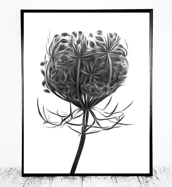 Hogweed Plant Print Hogweed Printable Hogweed by CristylClear