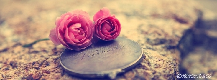 Love Wallpaper For Fb Timeline : miniature roses and coin badge medallion cute timeline profile covers. stunning timeline profile ...