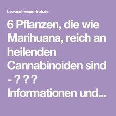 6 Pflanzen, die wie Marihuana, reich an heilenden Cannabinoiden sind – ☼ ✿ …