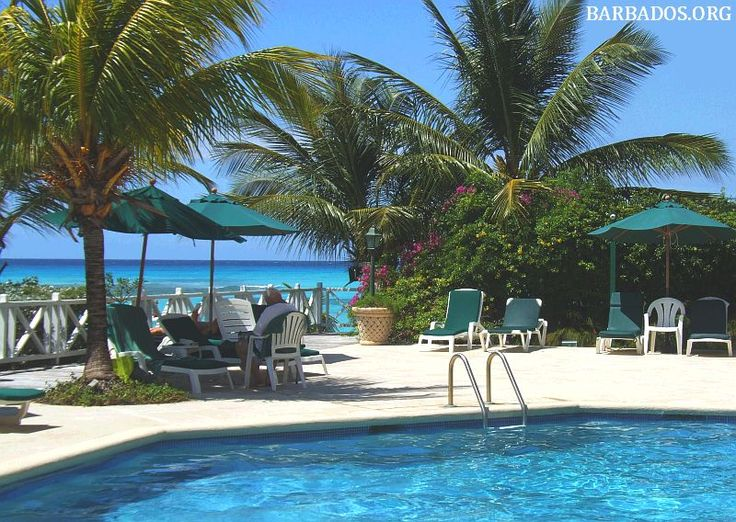 #Barbados hotels and resorts invite you to relax on the beach, have a dip in the pool, then relax in air-conditioned comfort and enjoy delicious on-site dining....