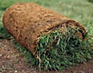 How to Lay Sod