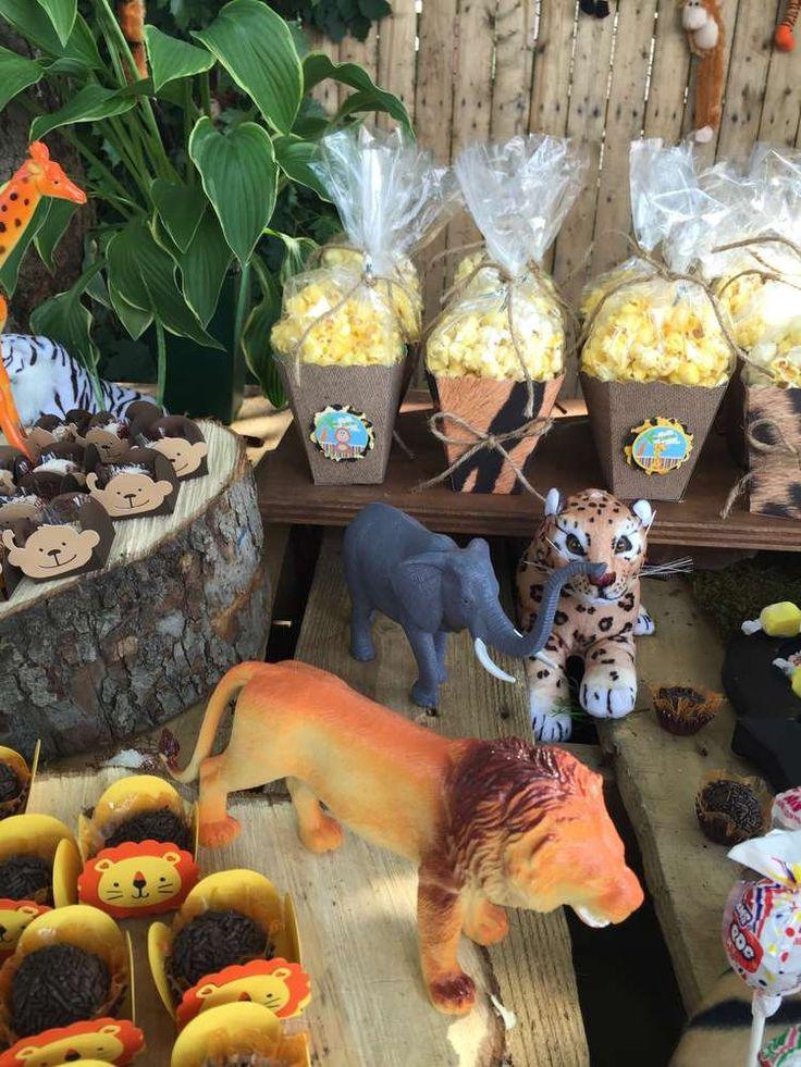 558 Best Images About Jungle Safari Party Ideas On