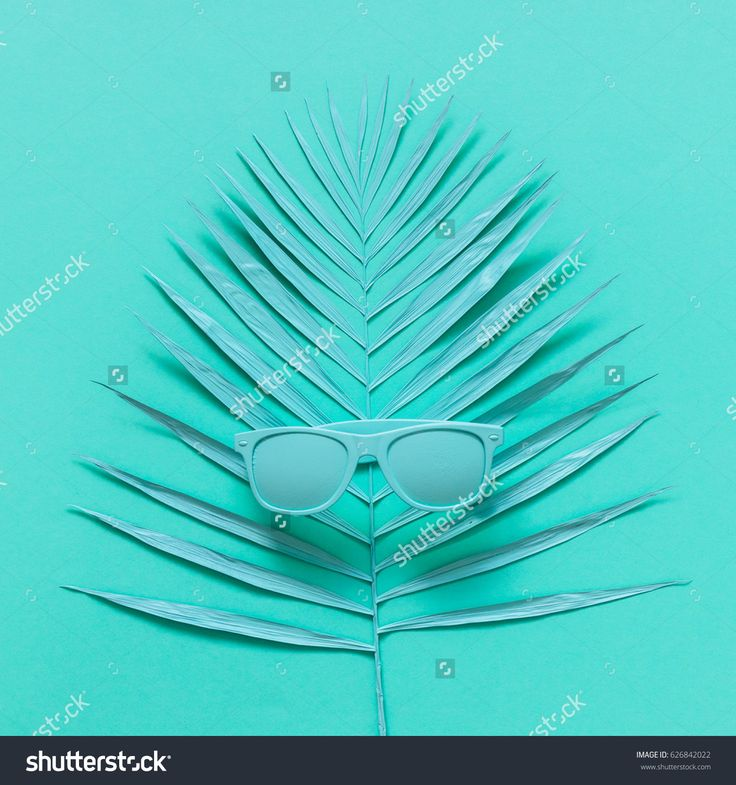 sunglasses lying on the palm leaf. all blue. trendy concept