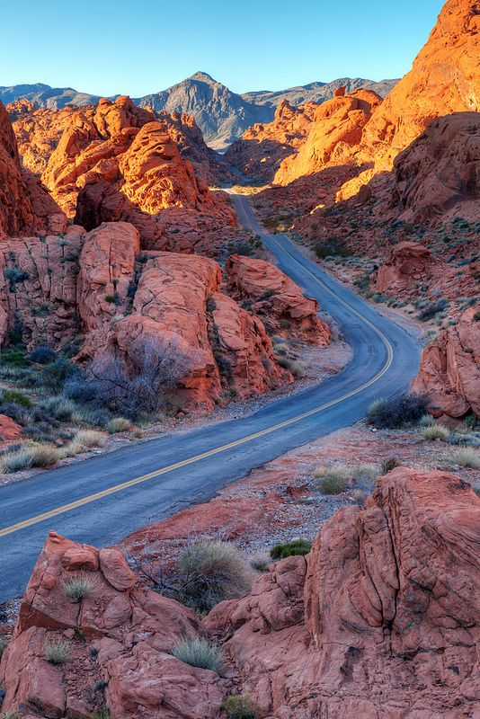 Two Lane Splendor, Valley of Fire State Park, Nevada