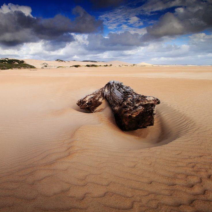 Sandy Cape by David Murphy, via 500px