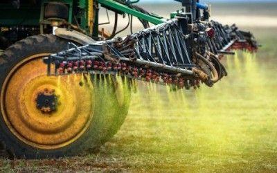 Il biologico ha meno pesticidi e più antiossidanti
