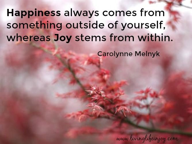 Joy is deeper than happiness. It is a glowing feeling within that brings a smile to your face for no reason at all.  This is the pureness of Joy.