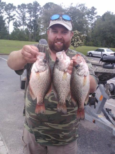 Caught these in mifflin lake in south alabama says john for Indiana crappie fishing