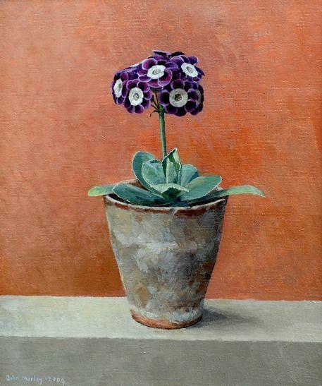 Auricula in a Flowerpot (2004) by John Morley