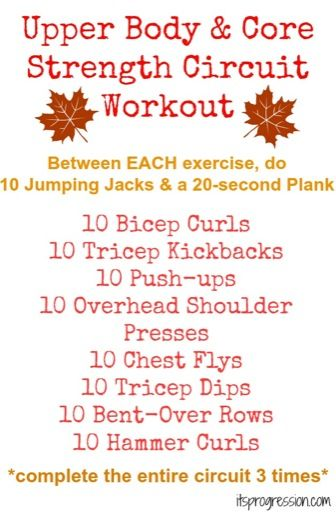 Upper Body Core Strength Circuit Workout                                                                                                                                                                                 More