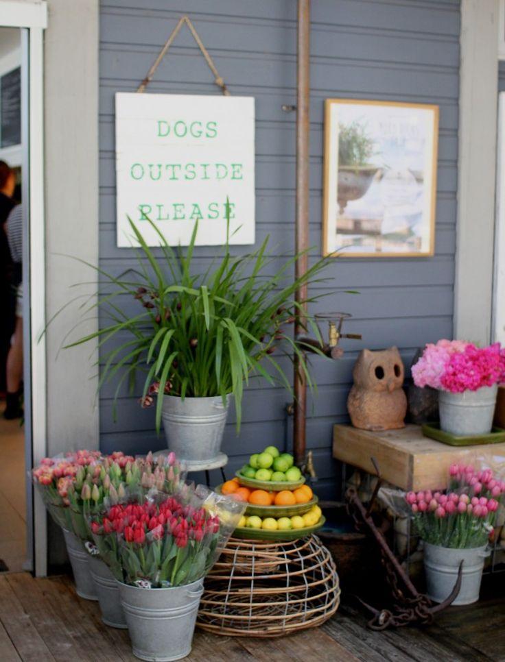 Boathouse - Balmoral Beach - My Kiki Cake - Sydney Food Blog - No dogs inside