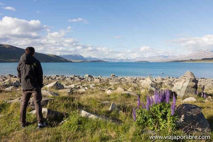 Locas actividades que hacer en Nueva Zelanda en Viaja por libre