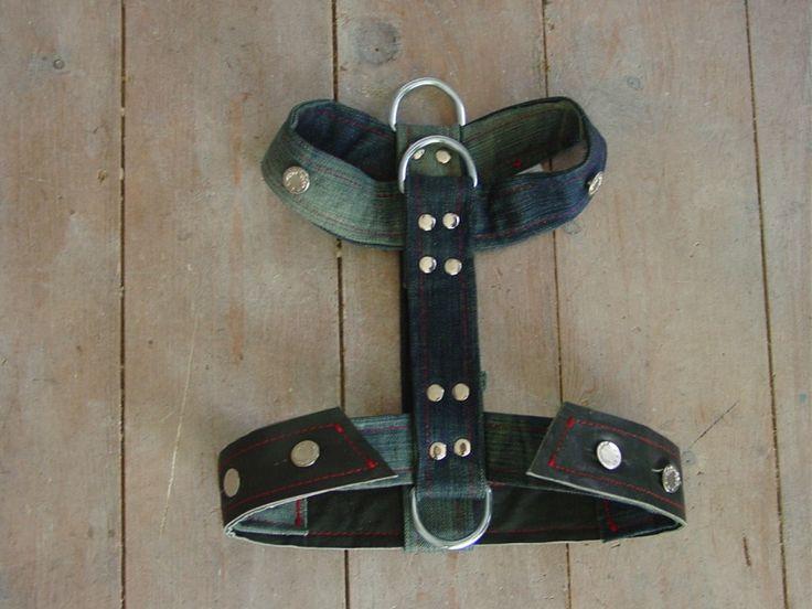 Tuig voor de hond. Donkerblauwe jeans van G-Star spijkerbroek.  Denim dog harness