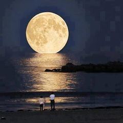From dusk through the night by Terry Griner #Pixily #moon #beach #walk