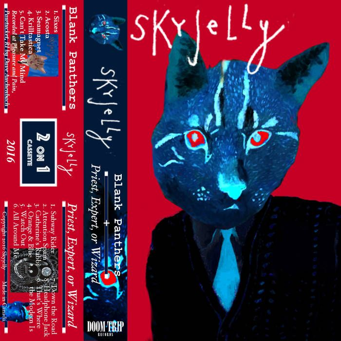 Review: Skyjelly - Blank Panthers / Priest, Expert, Or Wizard