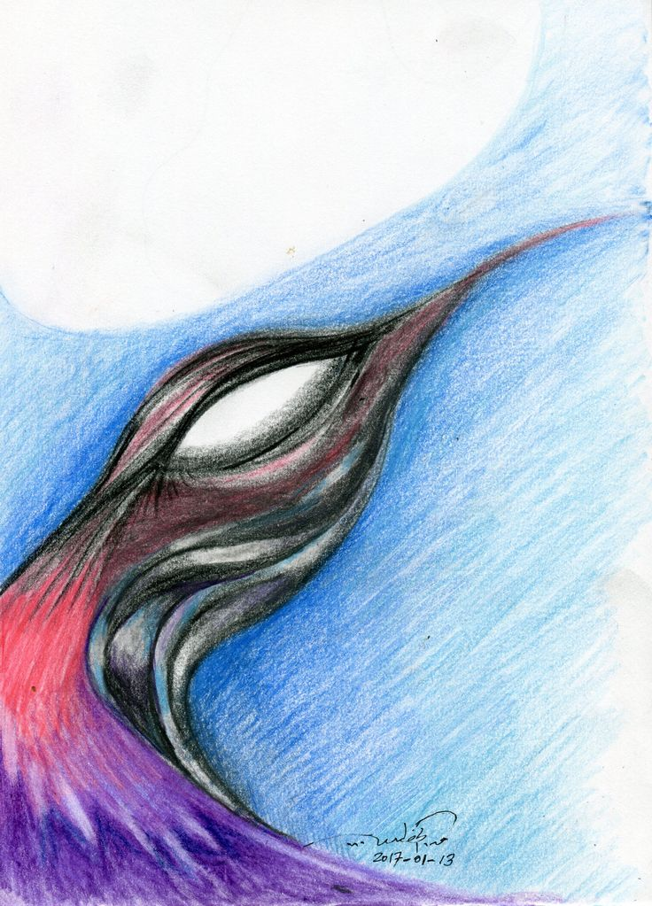 A portrait of a bird! Color pensils and 6 B pencil. Plese visit my website: qusay.alkhateeb.se