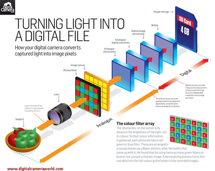 Cheat Sheet: how your digital camera turns captured light into an image