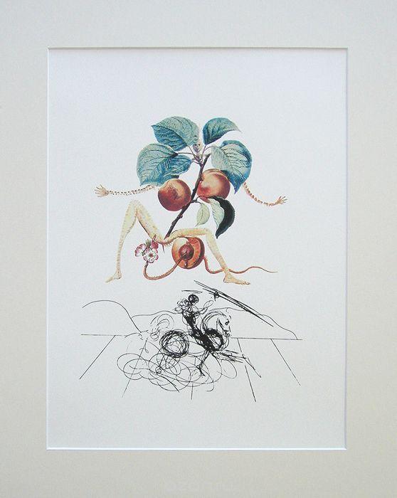 Сальвадор Дали. Кавалер Абрикос. Цветная литография. Серия FlorDali Les Fruits, 1979 | 13 500 р.