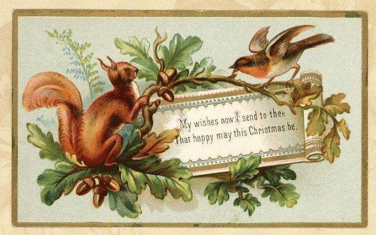 Long Ear Squirrel Acorns Finch Bird Gold Edge Antique Victorian Christmas Card
