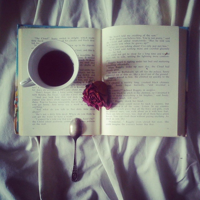 A good book and a cup of tea is all you need...