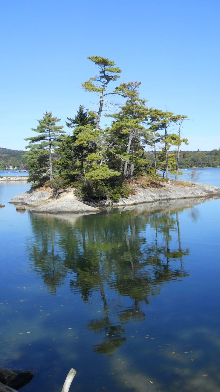 Blue Hill, Maine. Find accommodation in Maine: http://www.roomyeti.com/rentals/united-states/maine/