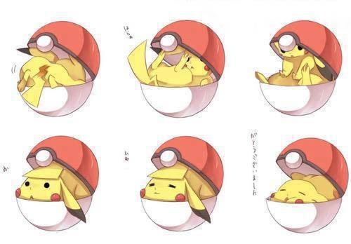 pikachu in a pokeball! super duper cute!