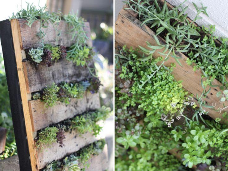 La combinación de madera y plantas hacen que una jardinera pueda convertirse fácilmente en la pieza central de cualquier jardín, pared o balcón.