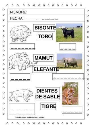 Fichas propias y de otras fuentes, material e imágenes relacionadas con la investigación de la prehistoria en Educación Infantil.