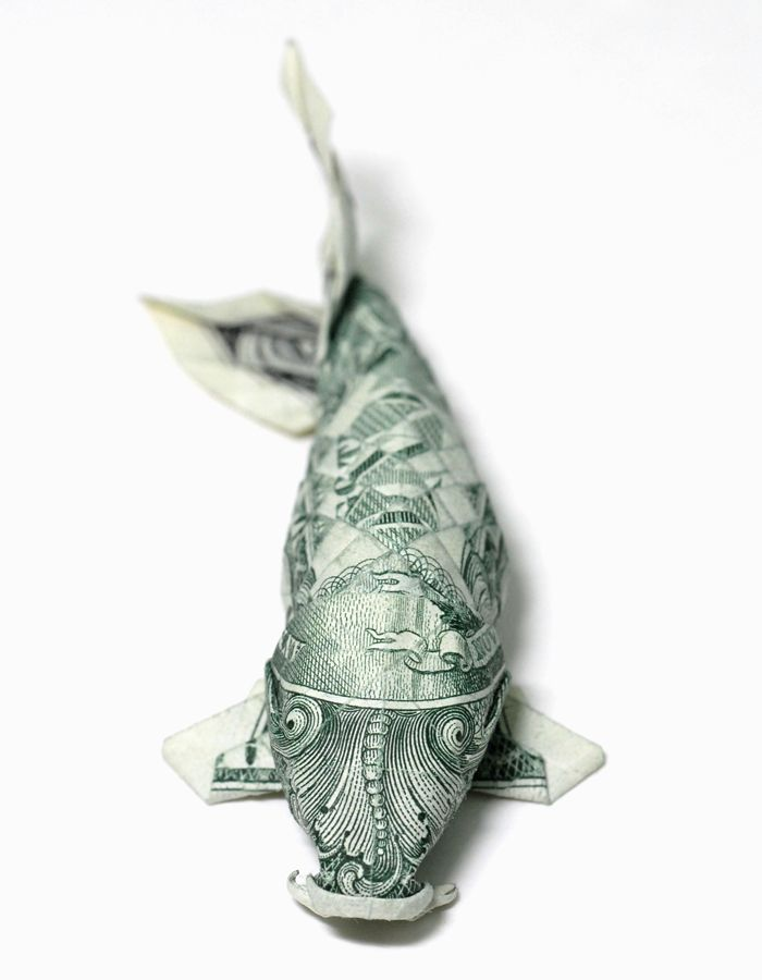 25 unique origami frog ideas on pinterest kids origami for Easy dollar bill origami fish